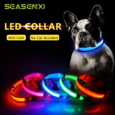 COLLAR LED DE PERRO MEDIANO NYLON RECARGABLE CON USB DAZA
