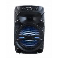 Parlante Daewoo Vert Recargable Bluetooth Aux Usb Dw-8r4